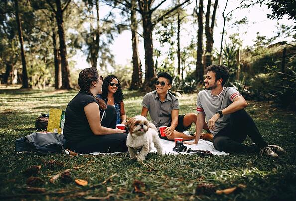 group of friends sitting in a clearing with a dog