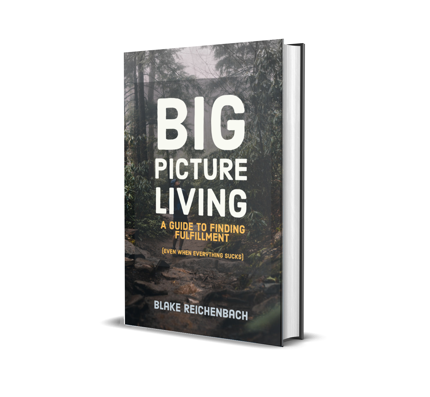 big picture living book cover