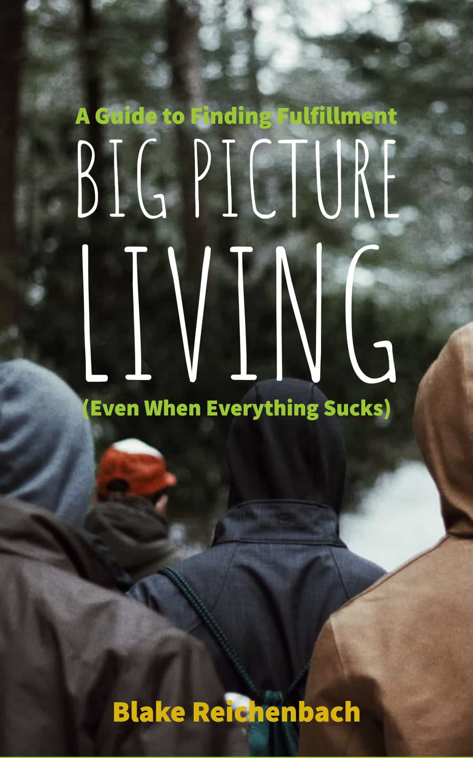 Big Picture Living Book Coming Soon