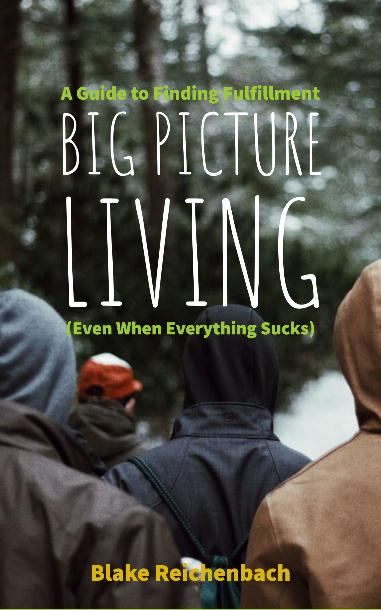Big Picture Living– Book coming soon!